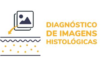 Imagem curso de Curso de diagnóstico de imagens Histológicas